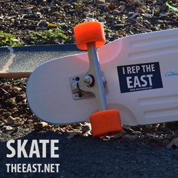 SkateTheEastChubbyunicorn